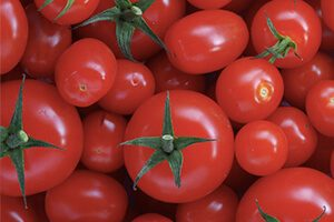 Nutrition food tomatoes