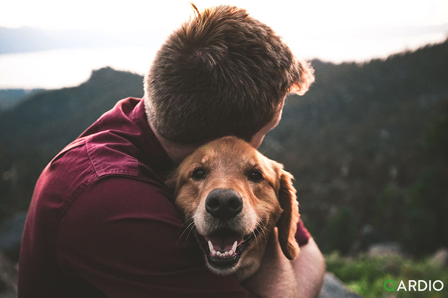 How pets can be good for your heart
