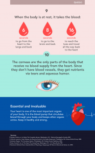 10 mind blowing facts about your heart (2)