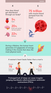 10 mind blowing facts about your heart (3)